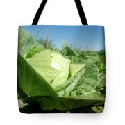 Organic White Cabbage  Tote Bag
