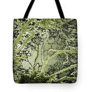 Oriental Garden Tote Bag