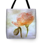 Oriental Poppy And Bud Tote Bag