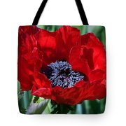Oriental Red Photograph Tote Bag