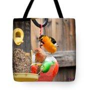 Oriole N Finch Tote Bag
