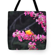 Oriole On Crabapple Tote Bag