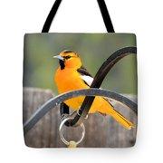Oriole Tote Bag
