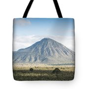 Orizaba Tote Bag