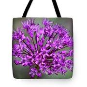 Ornamental Allium Tote Bag