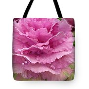 Ornamental Cabbage Tote Bag