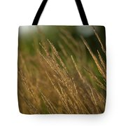 Ornamental Naturally Tote Bag