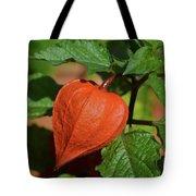 Ornamental Physalis Tote Bag