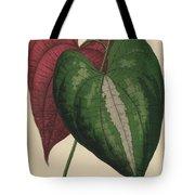 Ornamental Yam  Dioscorea Discolor Tote Bag