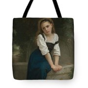 Orphan At The Fountain Tote Bag