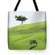 Oryx On Hill Tote Bag
