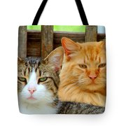 Oscar And Red Tote Bag