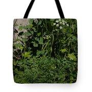 Osha And Valarian Tote Bag