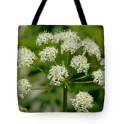 Osha Flowers 1 Tote Bag