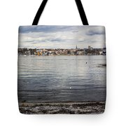 Oslo Waterfront Tote Bag