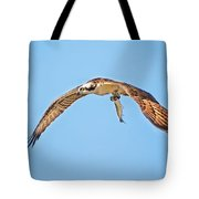 Ospre Carrying Lunch Tote Bag