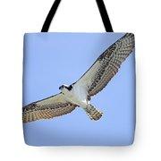 Osprey 1-30-11 Tote Bag