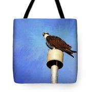 Osprey 1 Tote Bag