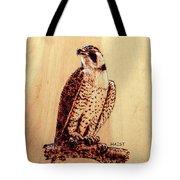 Osprey 2 Pillow/bag Tote Bag