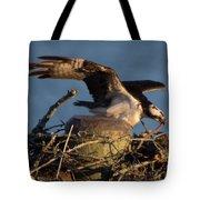 Osprey 2017-2 Tote Bag