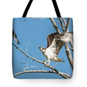Osprey And Black Billed Magpie Tote Bag