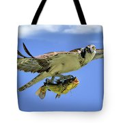 Osprey And Catfish Tote Bag