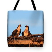 Osprey At Home Tote Bag