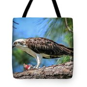 Osprey Breakfast Break Tote Bag
