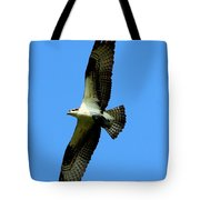 Osprey Carrying A Fish Tote Bag