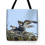 Osprey Family Portrait No. 1 Tote Bag