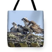 Osprey Family Portrait No. 2 Tote Bag