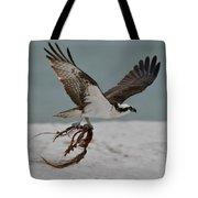 Osprey Flying With Seaweed Tote Bag