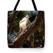 Osprey Hunting Tote Bag