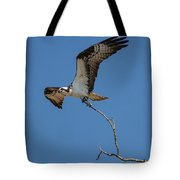 Osprey In Flight With Stick For Nest 031620160906 Tote Bag