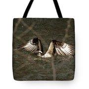 Osprey In The Creek Tote Bag