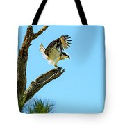 Osprey Landing Tote Bag