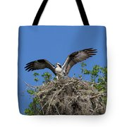 Osprey On Nest Wings Held High Tote Bag