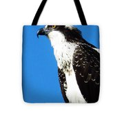 Osprey Profile Tote Bag