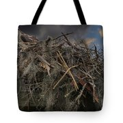 Osprey Protecting The Nest Tote Bag