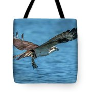 Osprey Ready For Fish Tote Bag