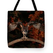 Osprey Ready For Take Off Tote Bag