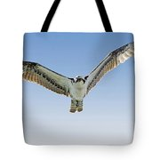 Osprey Soar Search Tote Bag