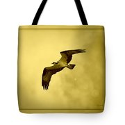 Osprey Soaring Into Golden Sunlight Tote Bag