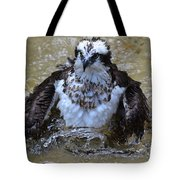 Osprey Splashing In Water Tote Bag