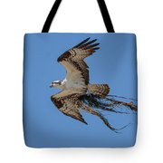 Osprey With Nesting Material 031620161559 Tote Bag