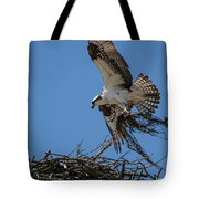 Osprey With Nesting Material 031620161567 Tote Bag
