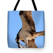 Osprey's Catch Tote Bag