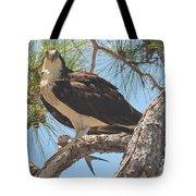 Osprey's Dinner Tote Bag