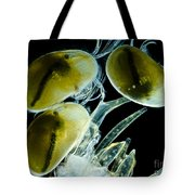 Ostracods, Lm Tote Bag