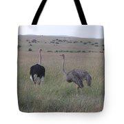 Ostrich Love Tote Bag